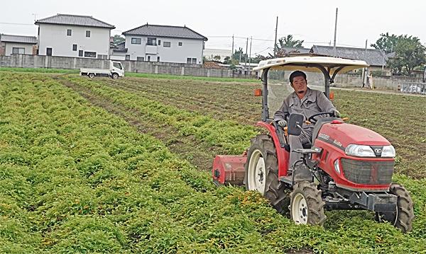 かいはつ農園刈り取り作業