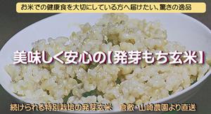 美味しく安心の【発芽もち玄米】