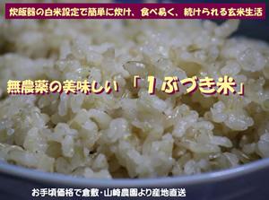 無農薬の美味しい「1ぶづき米」