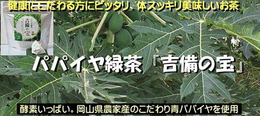 パパイヤ緑茶「吉備の宝