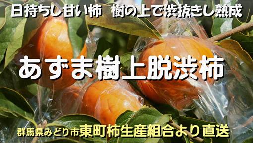 あずま樹上脱渋柿