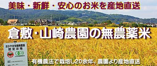 倉敷・山崎農園の無農薬米