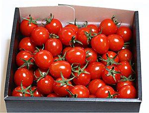 トマト-ルージュの宝石箱2