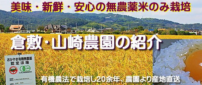 倉敷・山崎農園の紹介