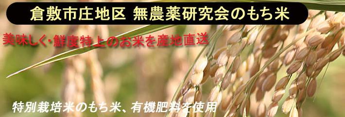 倉敷市庄地区 無農薬研究会のもち米